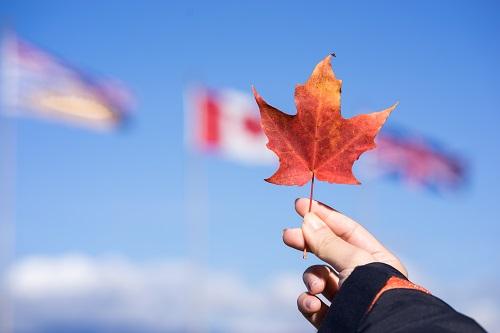 持加拿大枫叶卡,加国福利享不停