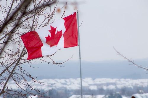 加拿大移民福利