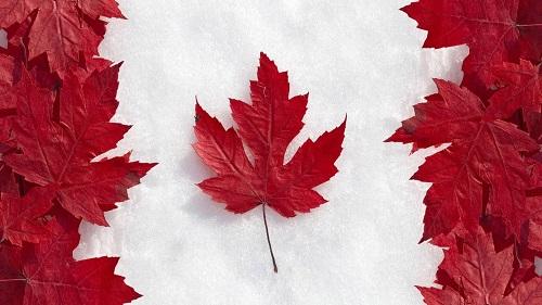 加拿大省技术移民条件有哪些?