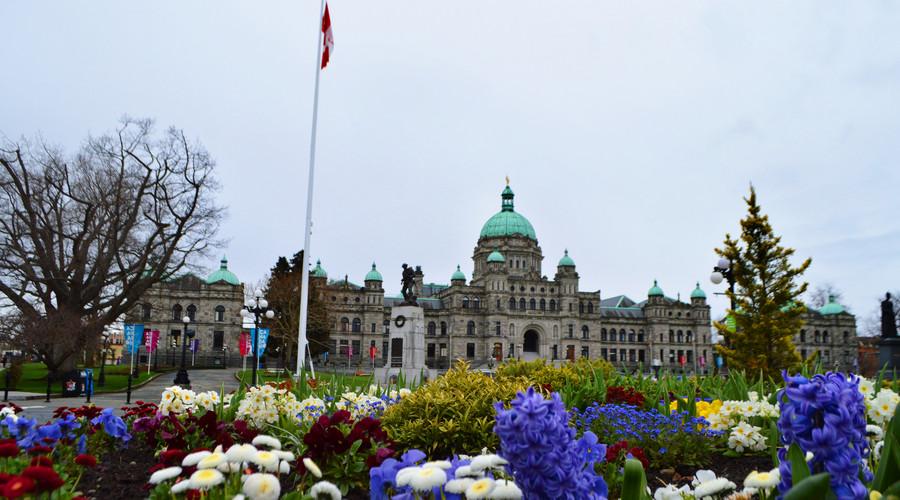 (一)移民加拿大,这十三个福利制度一定要先了解