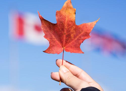 魁省将拒绝接受以魁北克移民为跳板的移民行为!