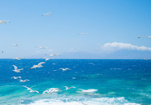 移民希腊享受良辰美景!