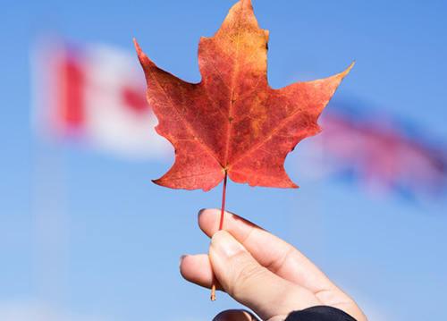 移民加拿大享受优质的教育资源!