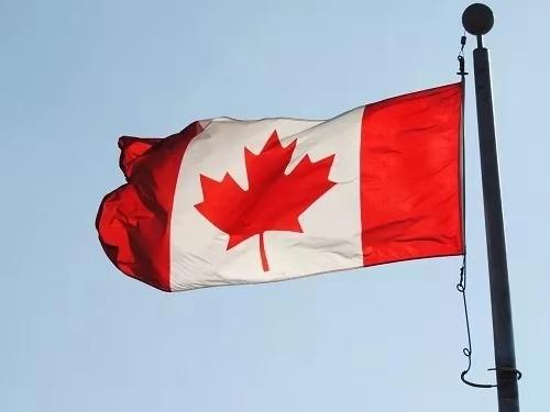 给人春天般温暖的加拿大!