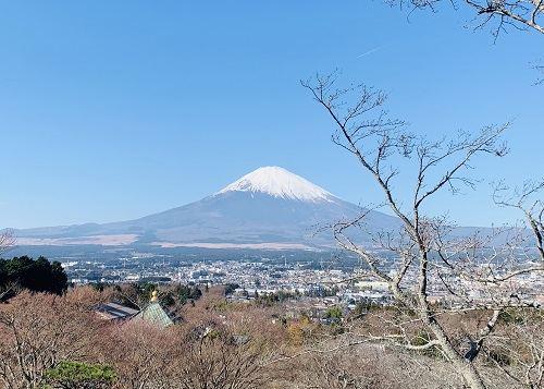 为什么越来越多的人看上大阪房产?