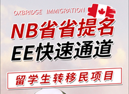 nbee留学移民项目